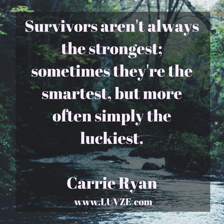 120 Survival Quotes And Sayings Work Motivational Quotes Survival Quotes Survivor Quotes