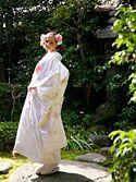 白無垢2051「緞子手刺繍 花鼓孔雀扇面」/レンタル和装