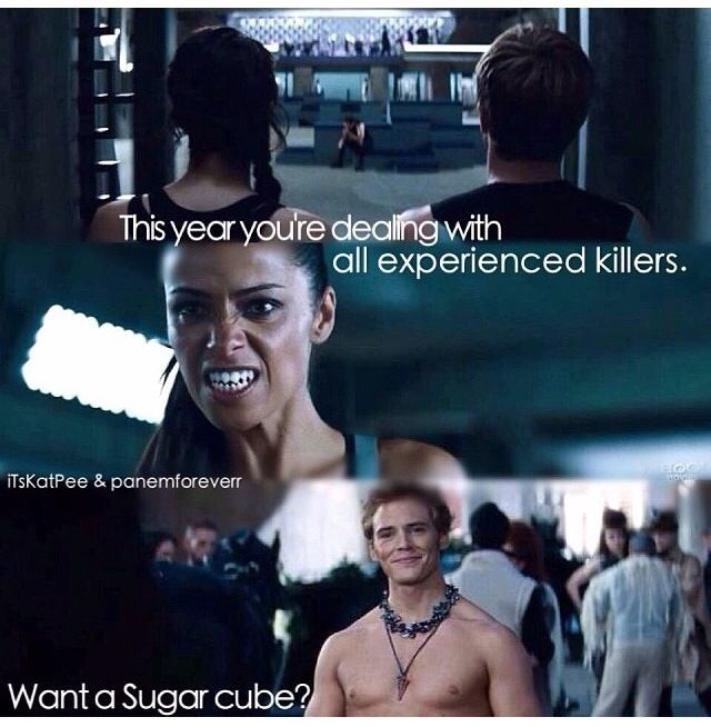 Yes Finnick You Re Preparing To Kill Her And The First Thing You Ask Is Simply Want A Sugar Cube Hunger Games Quotes Hunger Games Humor Hunger Games