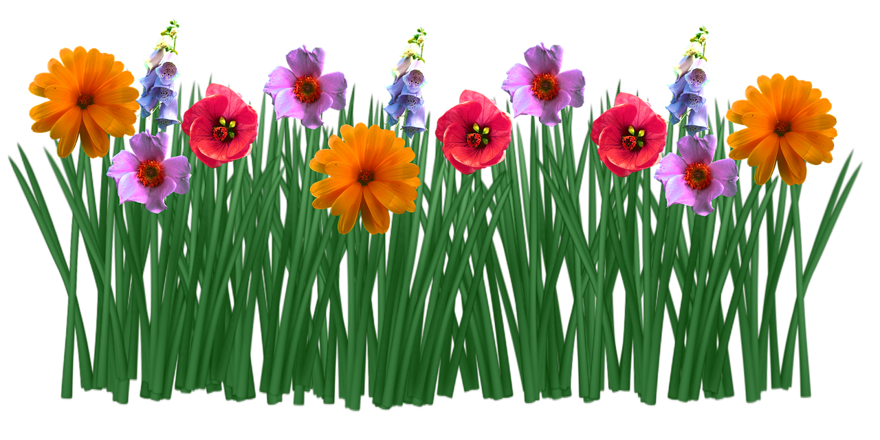Plantas De Primavera Con Flores