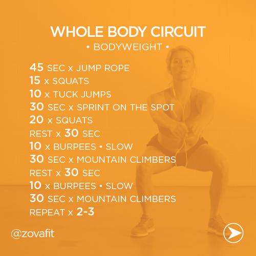 Whole Body Circuit Workout | Instagram @Zain Memon Memon Memon Memon Memon Zova