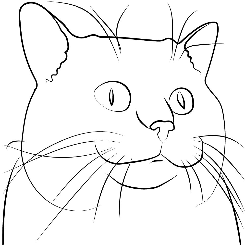 A Line Drawing Of A Cat Face Line Art Vector Line Art Vector Drawing