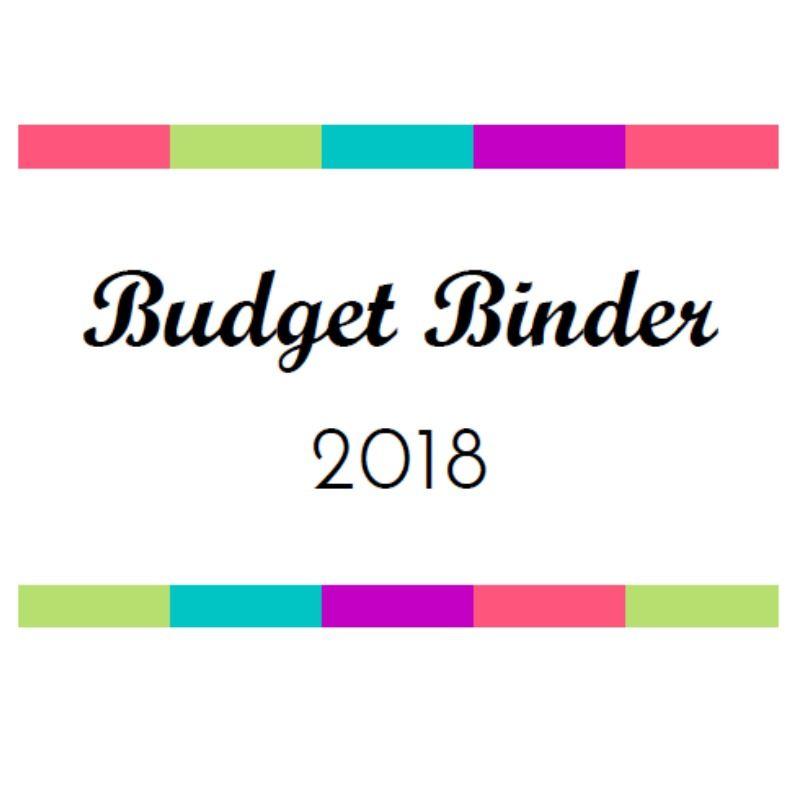 2020 Budget Binder: 50+ Budgeting & Financial Printables