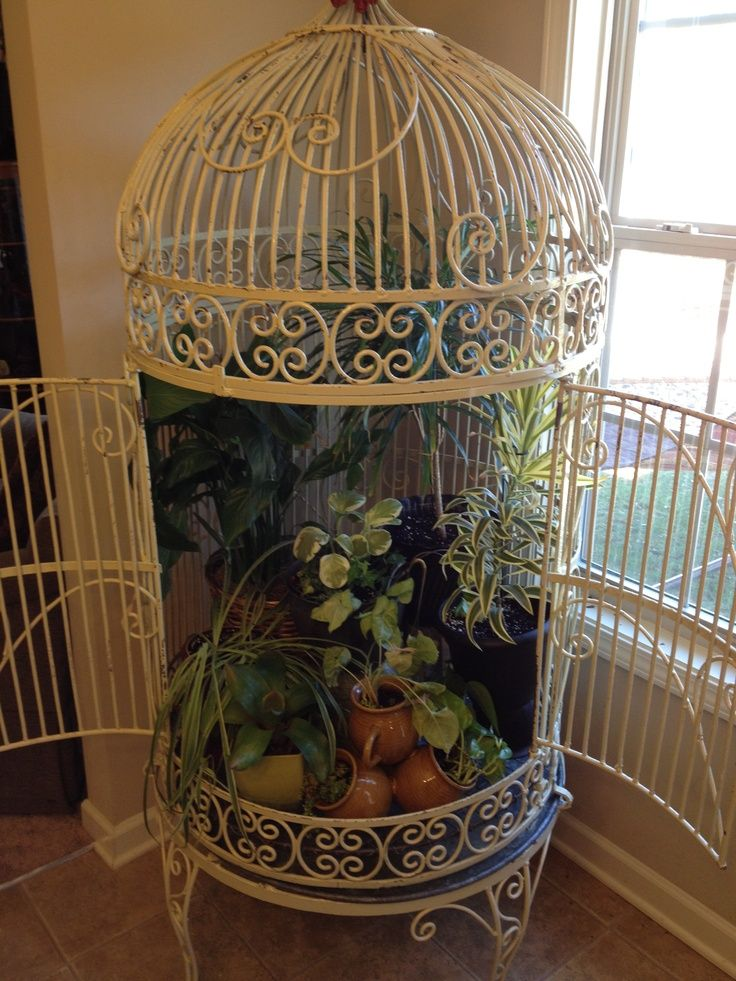 Pin By Christine Hughes Lawson On For The Yard Pinterest Bird Cage Decor Vintage Bird Cage Big Bird Cage
