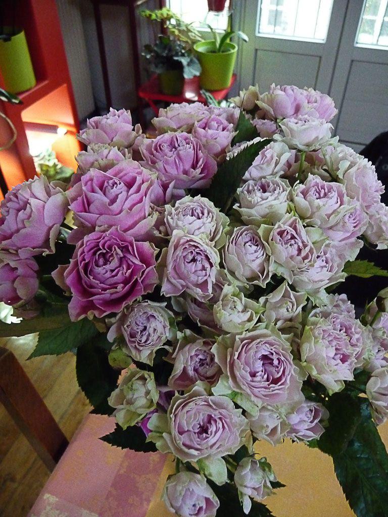 petit bouquet de minis roses anciennes. | mes fleurs preferees