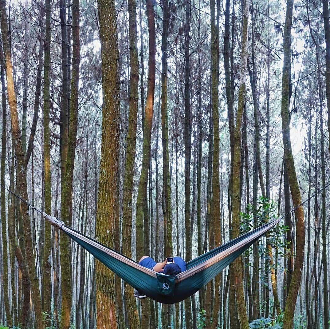 Ok Monday. Please be nice.  Amazing  hammock_sg #hammock #hammocklife #neverstopexploring #outdoorlife