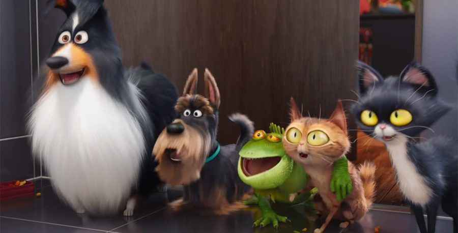 The Secret Life Of Pets On Netflix Now Family Movies On Netflix