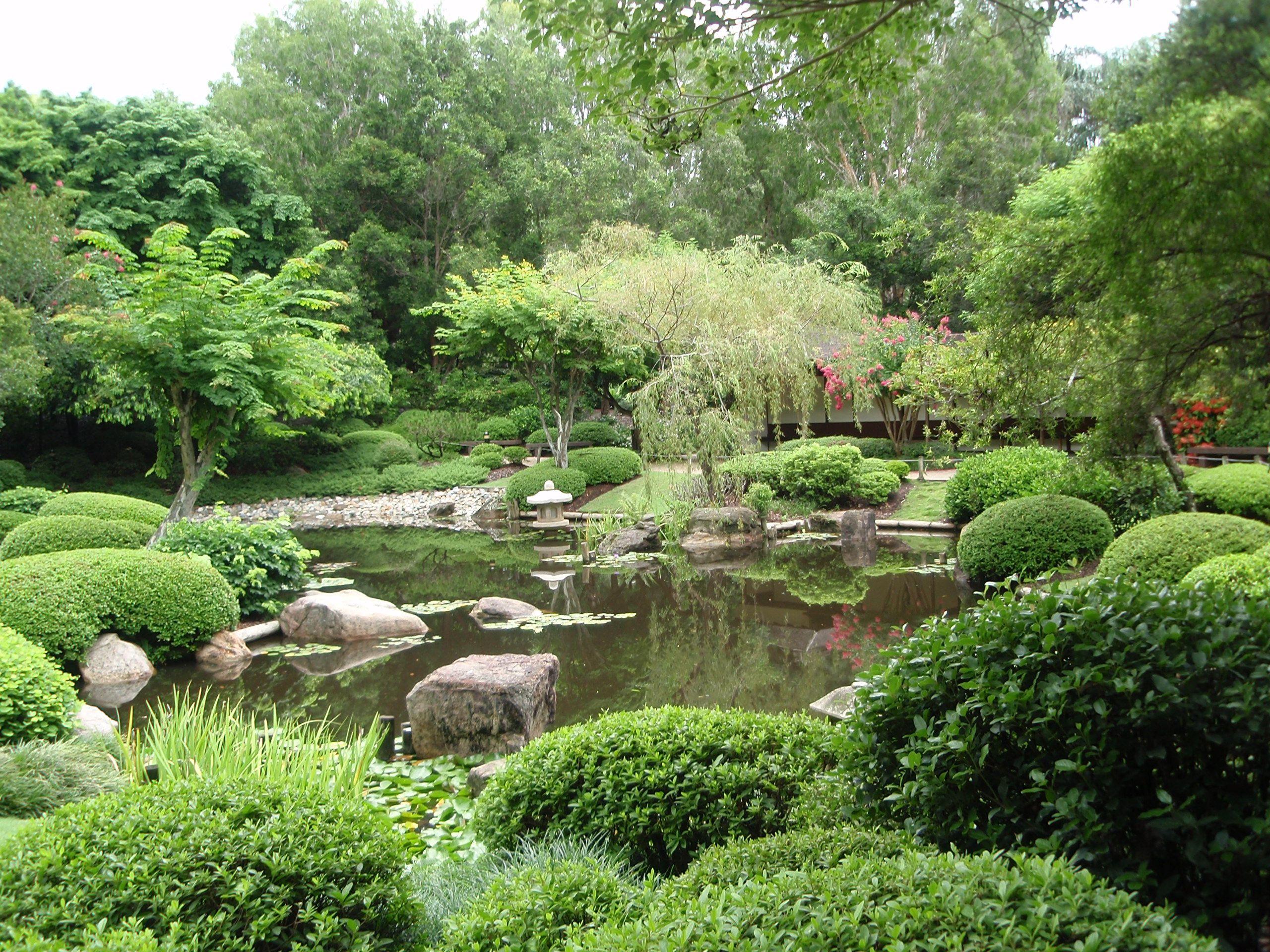 mt cootha botanical gardens 2 brisbane australia favorite places