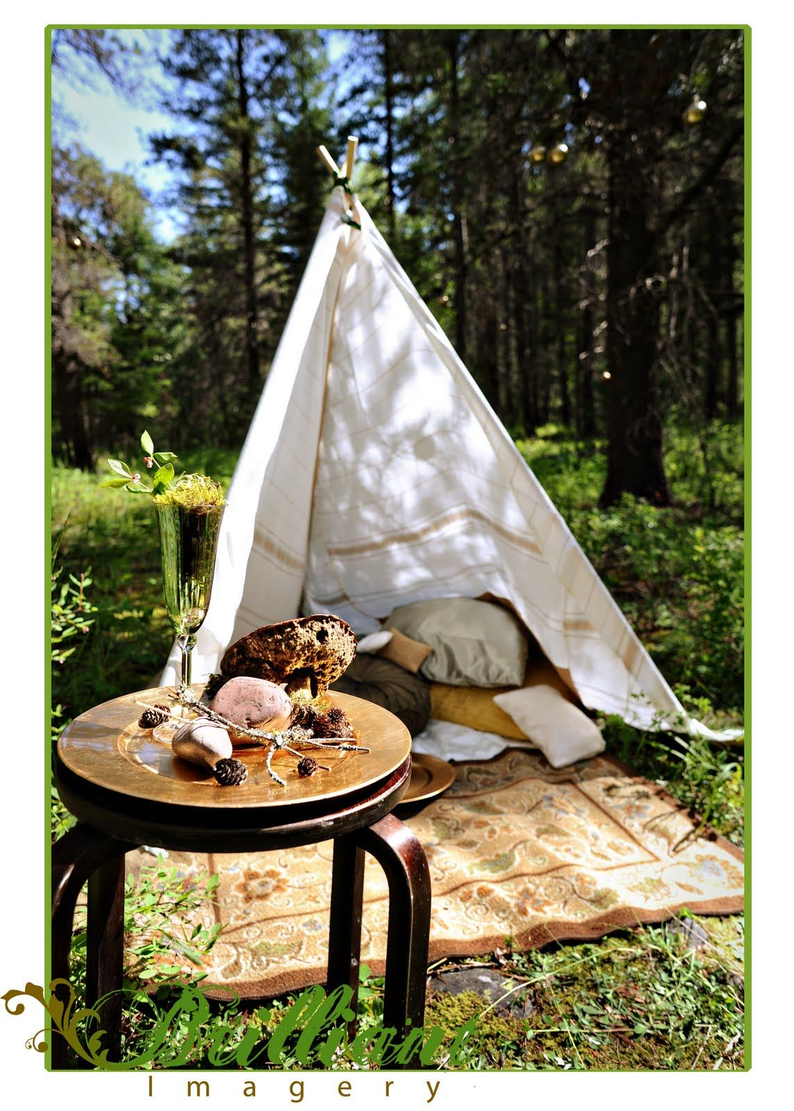 Montana Gl&ing Inspiration - By Rachel Garcia of Brilliant Imagery a boutique wedding photography studio specializing in creative weddings and trash the ... & glamping tent ideas - Google Search | camping party | Pinterest ...