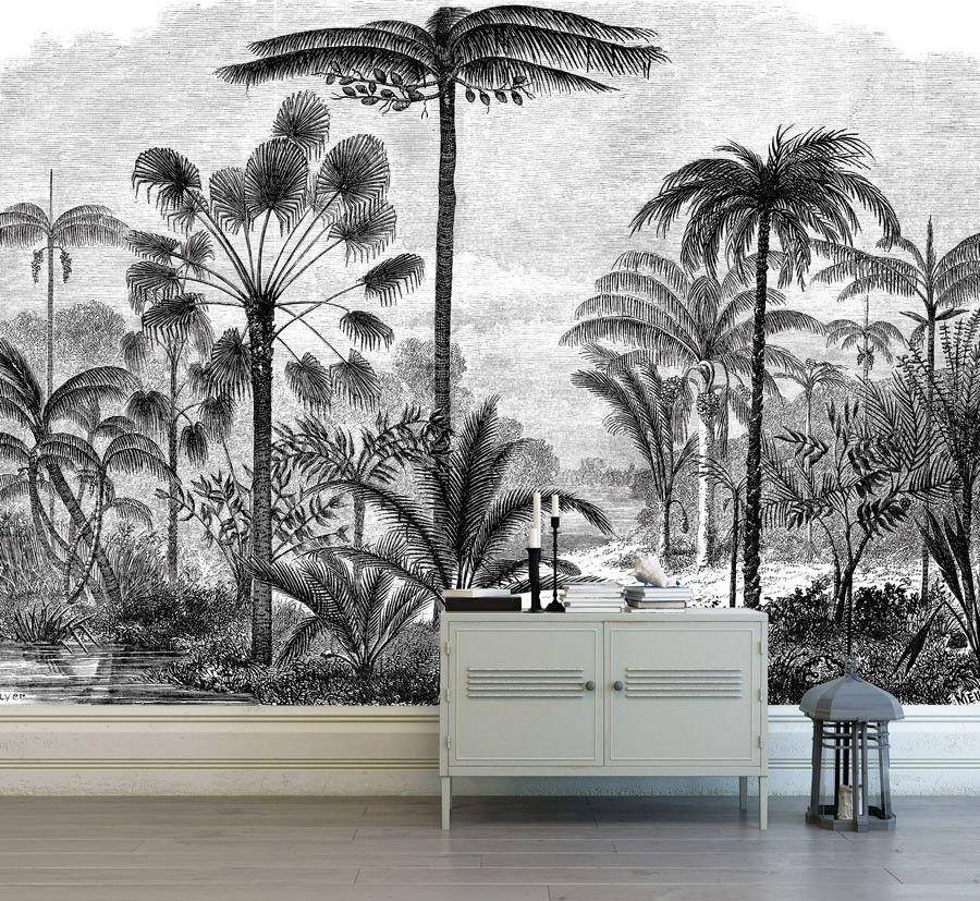 Tableau Deco Noir Et Blanc Gravure Palmier Papier Peint Panoramique Papier Peint Papier Peint Botanique