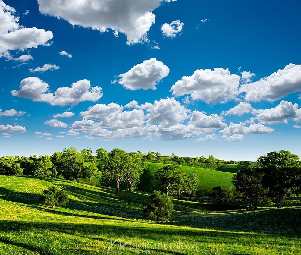 Green Meadow Landscape Wallpaper Landscape Beautiful Wallpapers Backgrounds