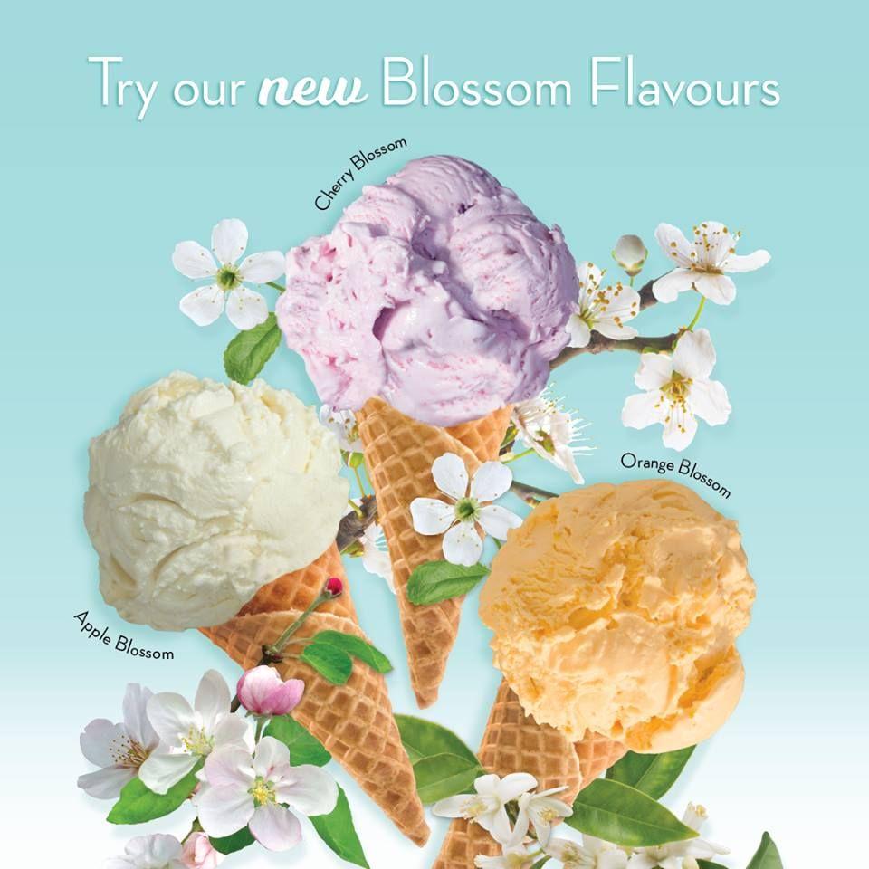 Marble Slab Creamery Coupons Ice Cream Flavours Marble Slab Creamery Easter Ice Cream Ice Cream Flavors