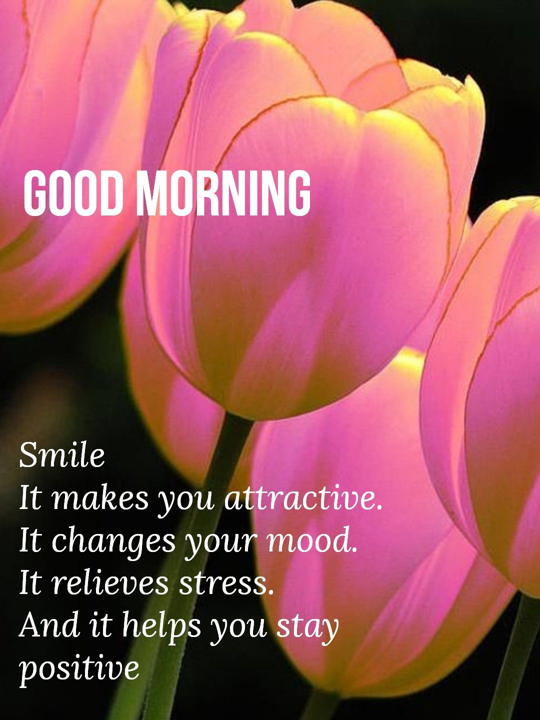 Pin By Vinayak Shetty On Good Morning Pinterest Morning Greeting