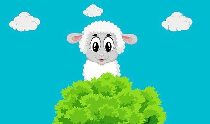 Why do we Celebrate 'Eid AlAdha Eid ul adha messages