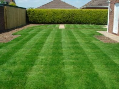 Prepare Your Lawn For Next Year Now Lawn And Landscape Lawn Care Lawn