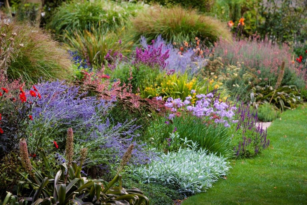Beautiful perennial border at The Garden Of St Erth. Photo