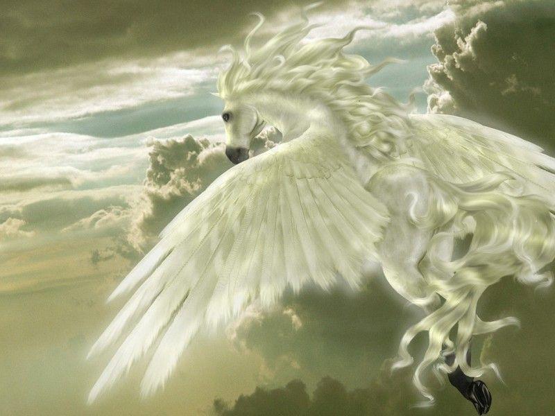 Les Fonds D Ecran Un Cheval Aile Dieux Et Deesses Grecs Creatures Mythiques Creatures Imaginaires