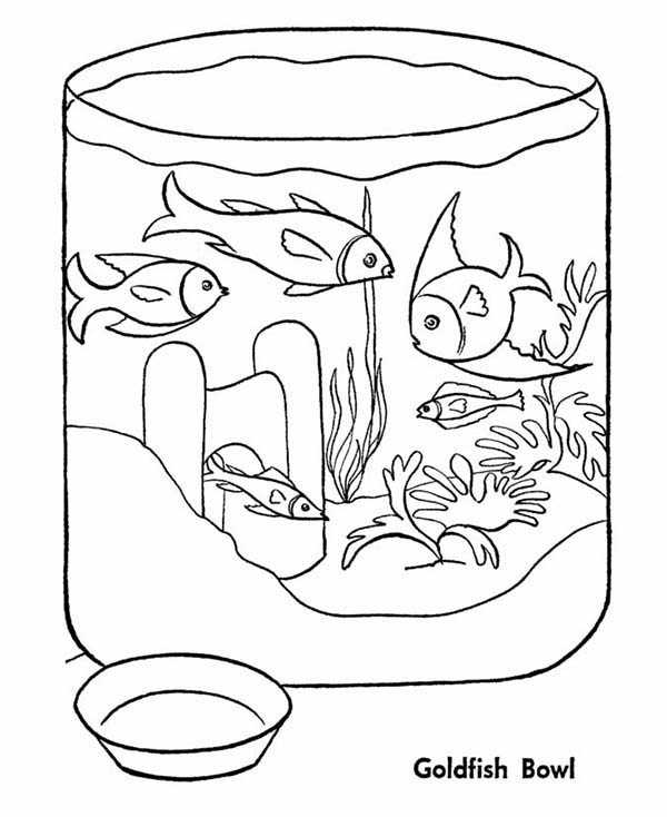 Goldfish In Fish Bowl Coloring Page Download Print Online Coloring Pages For Free Color Nimbu Pattern Coloring Pages Coloring Pages Online Coloring Pages