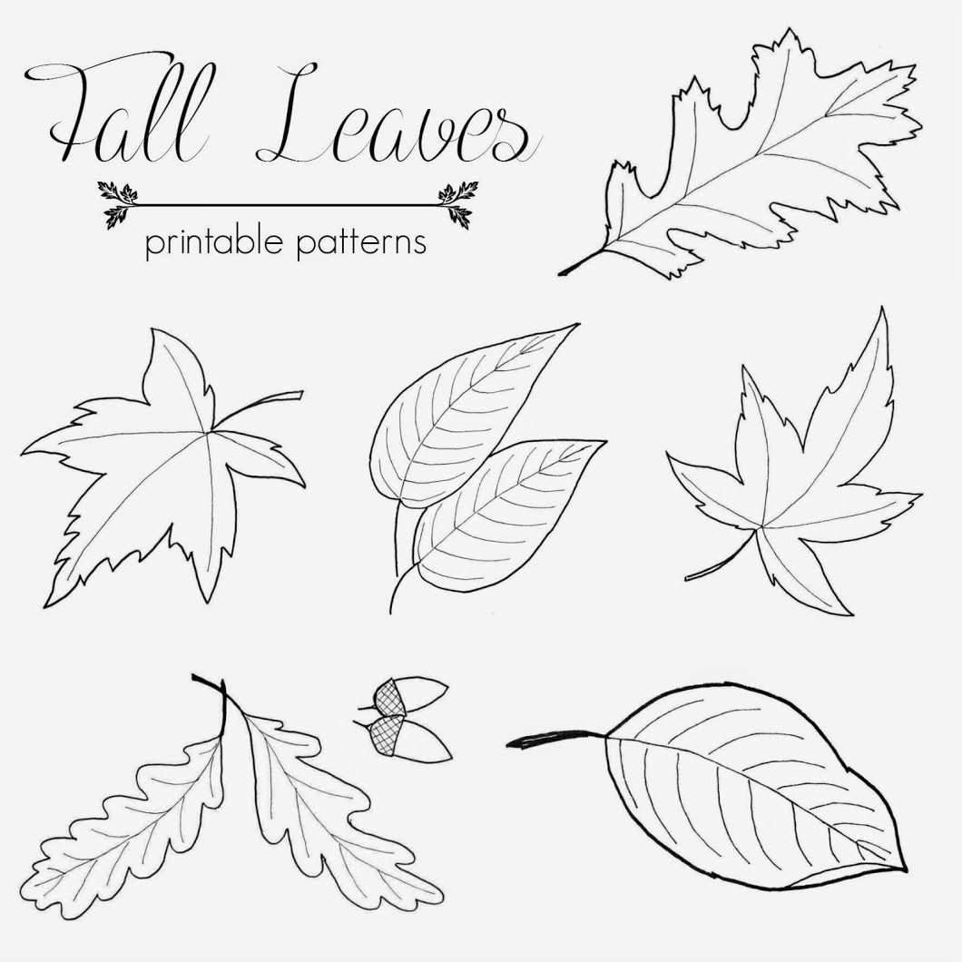 Fall Leaf Printable Patterns To Me Autumn Means The Beautiful Changing Colors Of The Leaves I