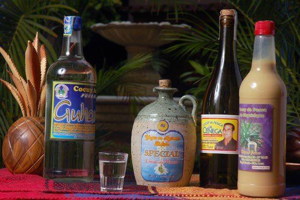 Cocuy Bebida Alcoholica Larense Venezuela Bebidas Espirituosas