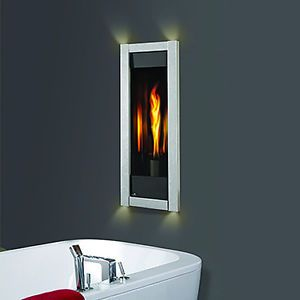 Napoleon GT8 Direct Vent Fireplace