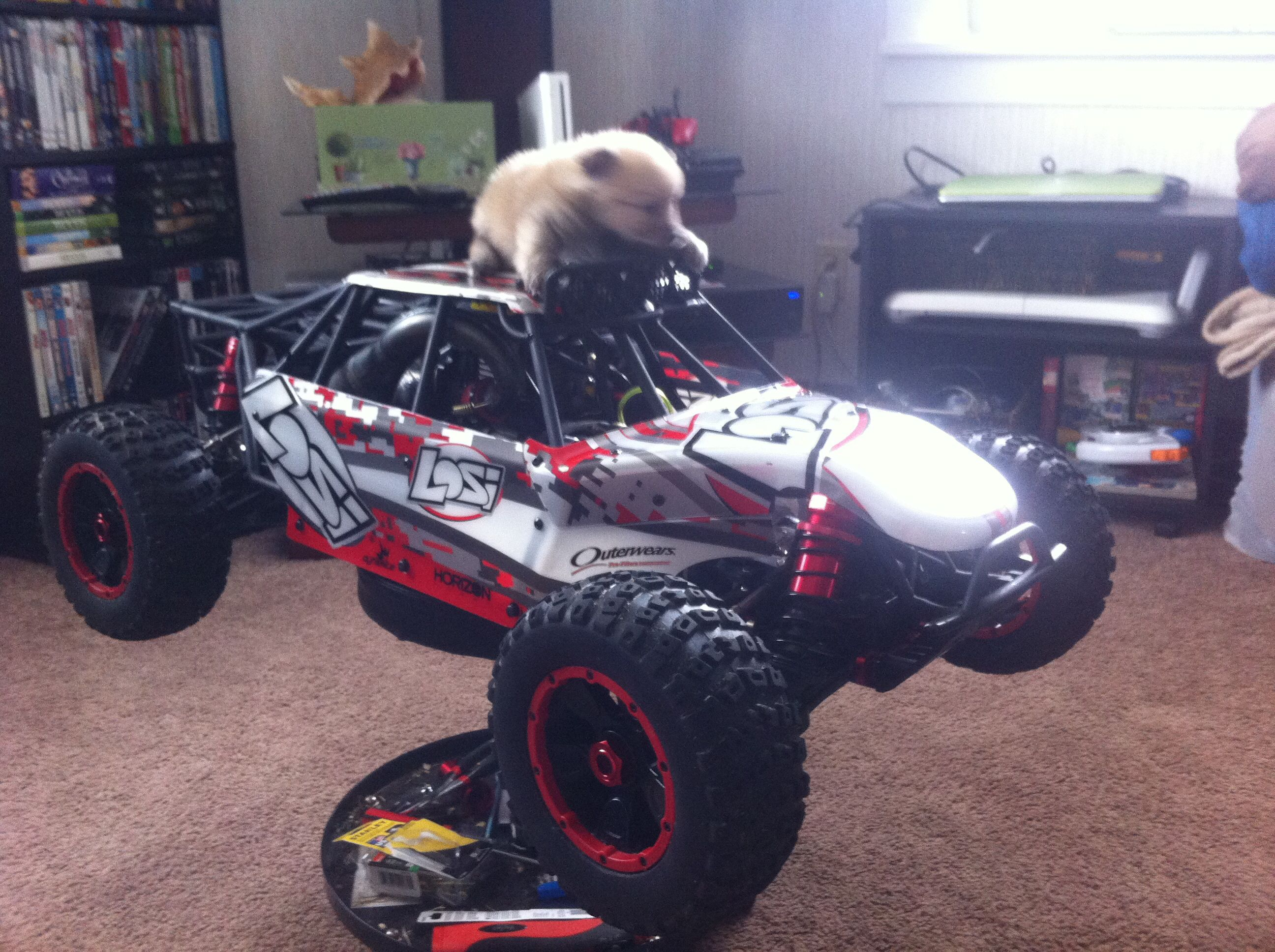 1 5 scale RC 1 36 scale puppy