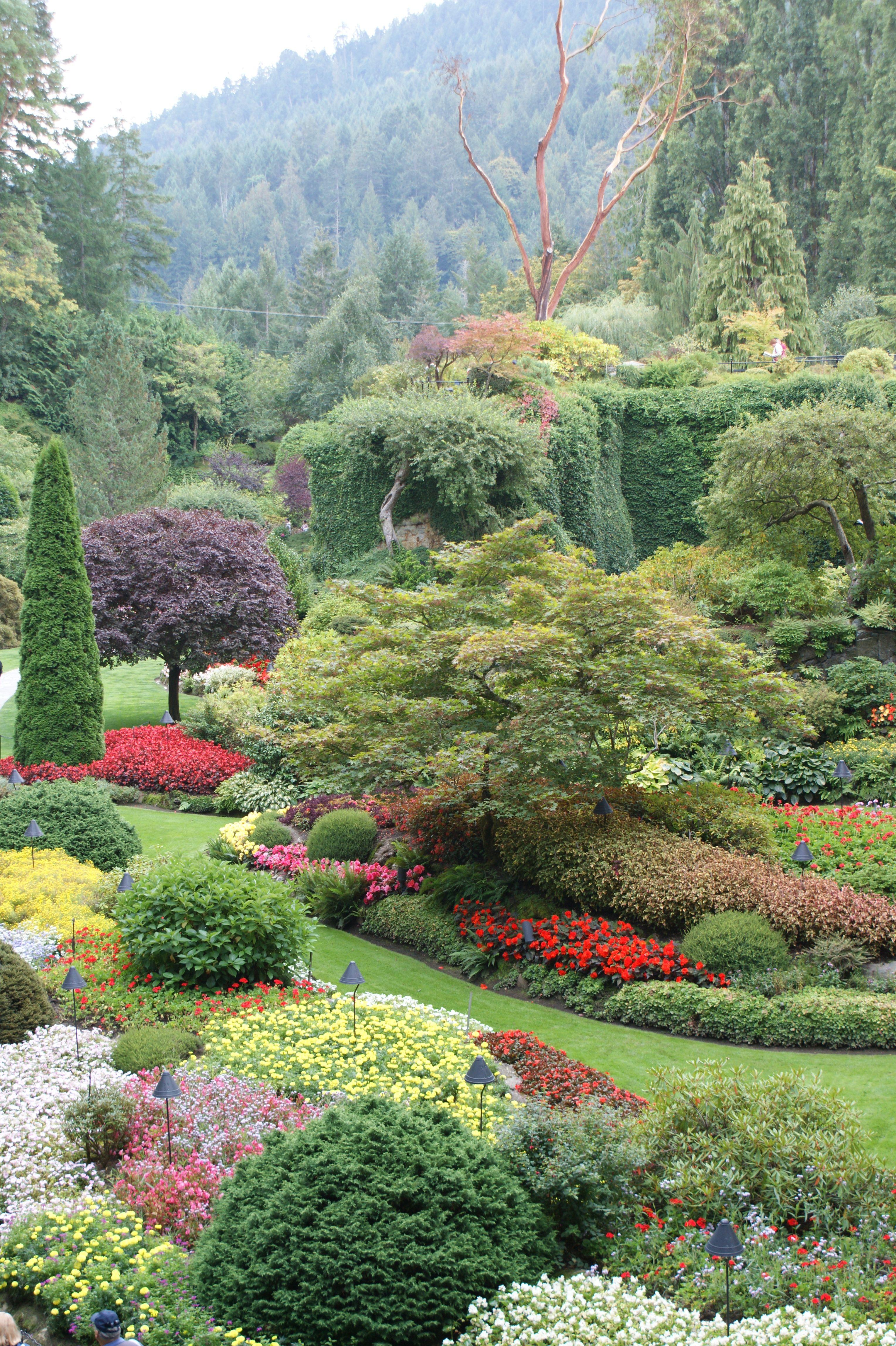 view. butchart gardens. photo by kim chapman