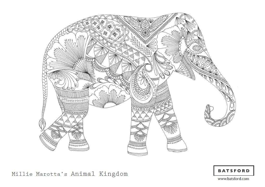 Free Elephant Zentangle Download Elephant Coloring Page