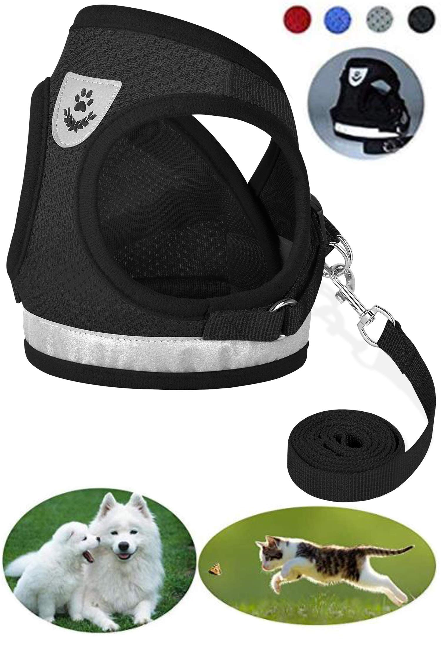 Cats Essential in 2020 Cool dog harness, Cat pet