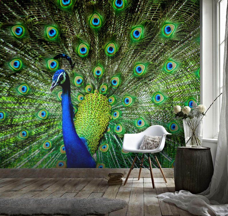 3d Gorgeous Peacock Feather Wallpaper Removable Self Etsy Feather Wallpaper Mural Wallpaper Feather Wall