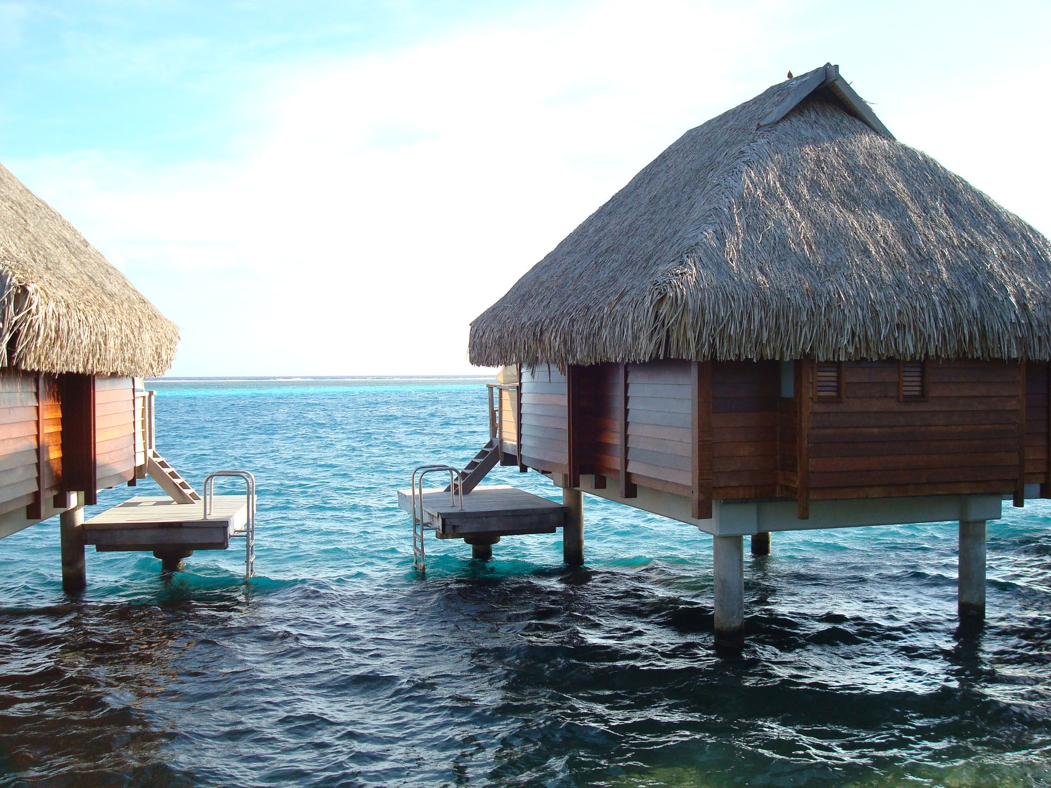 Moorea Nothing Beats Snorkeling From Your Room