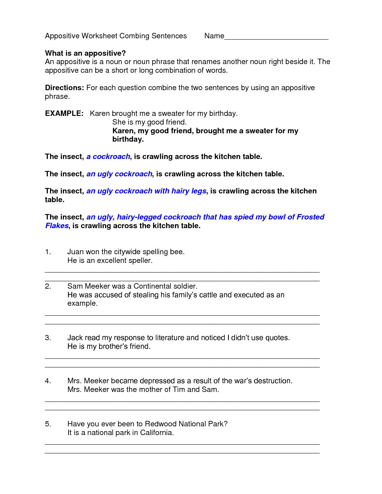 Worksheets On Appositives