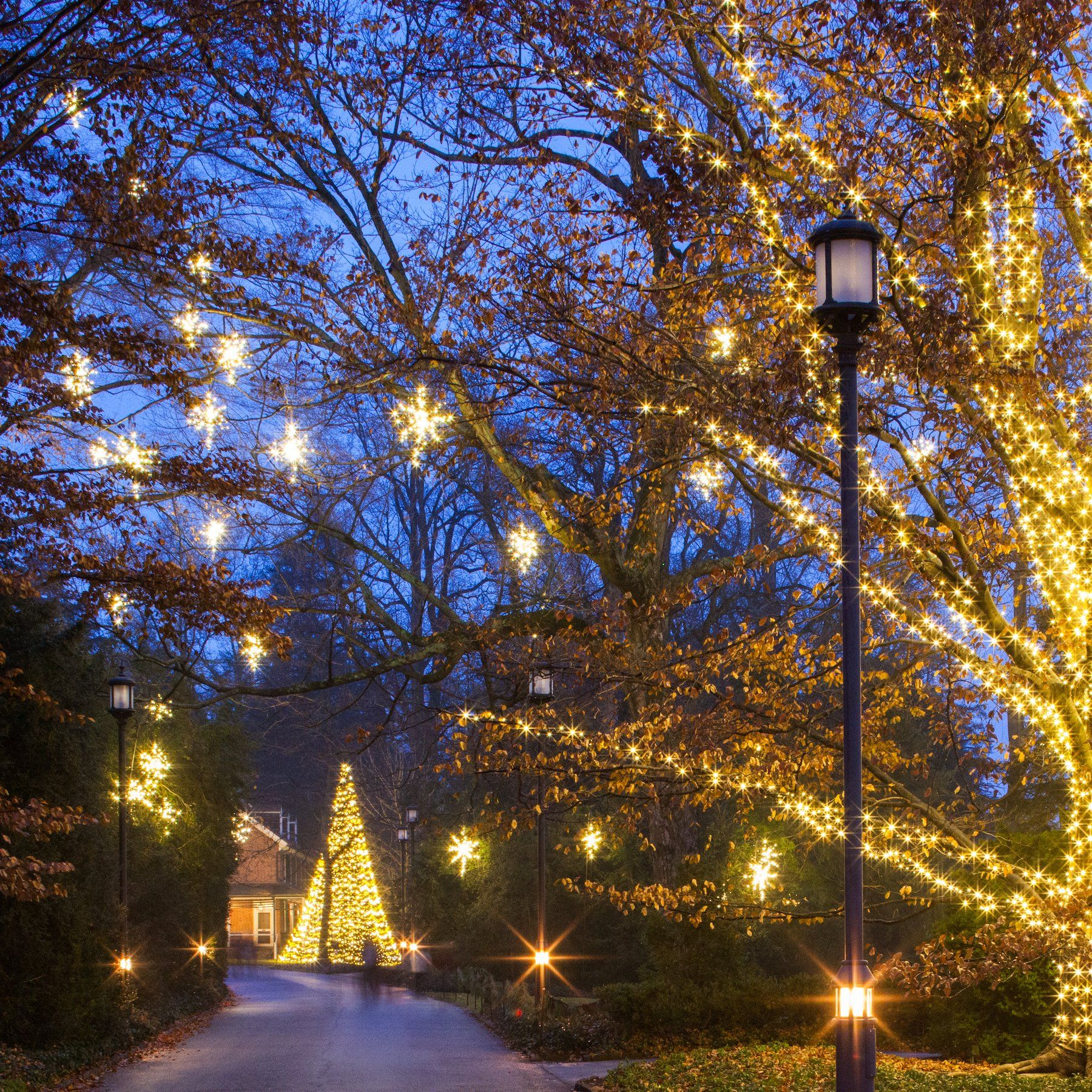 Best Time To Visit Longwood Gardens