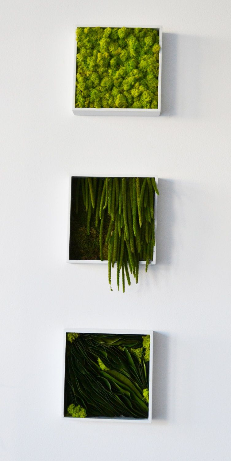 Preserved Greens Wall Plaque. $90.00, via Etsy. | Green ...