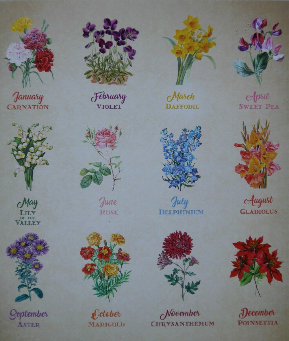 Hunkydory Clear For the Love of Stamp Set BIRTH FLOWERS