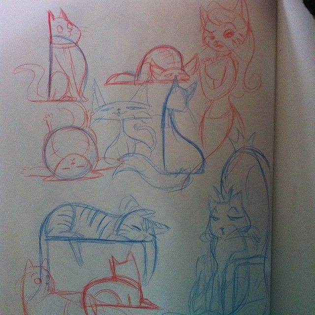 geekdonnatroy:  cats