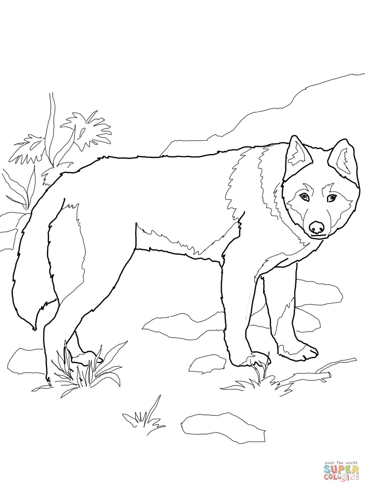 Dingo Wild Dog Coloring Page Supercoloring Com Dog Coloring