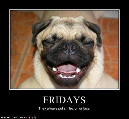 9710f67c1b9ba6fe5ade3d4d9ec061e6 friday they always put a smilez on your face funny friday dogs,Funny Dog Face Meme