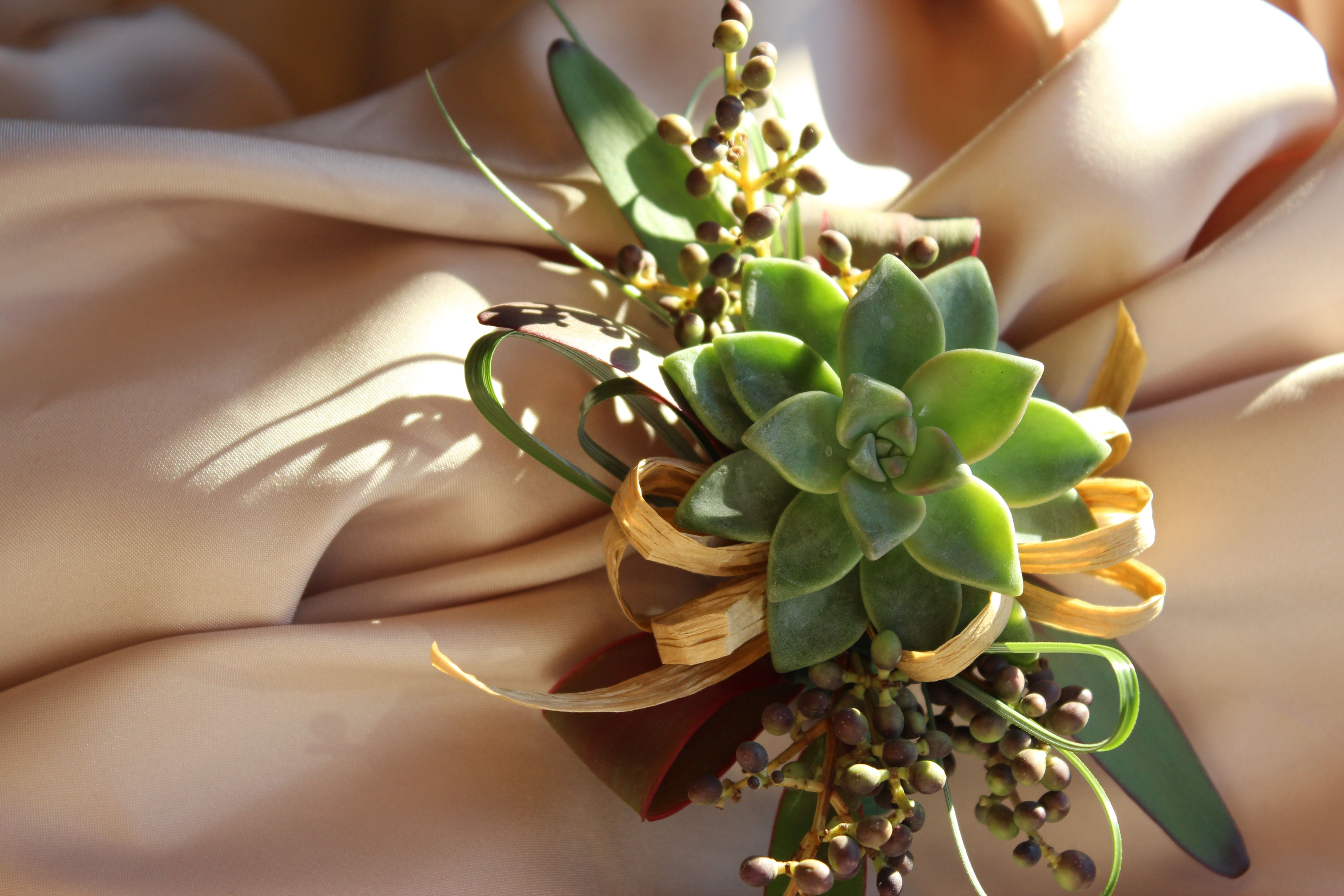 Succulent Mothers Corsage So Pretty With The Raffia Bow Laura