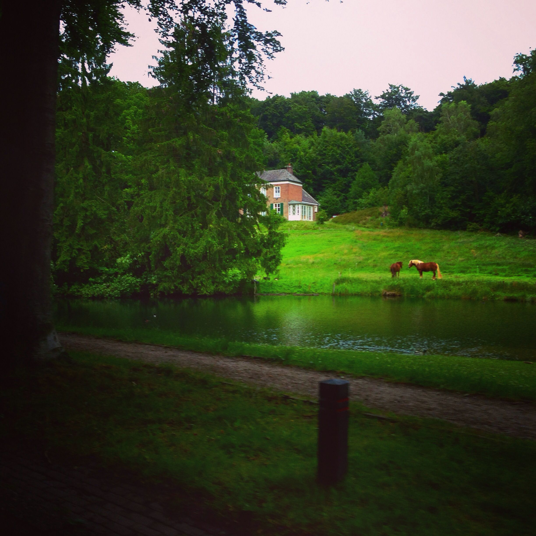 Holland ❤️❤️❤️