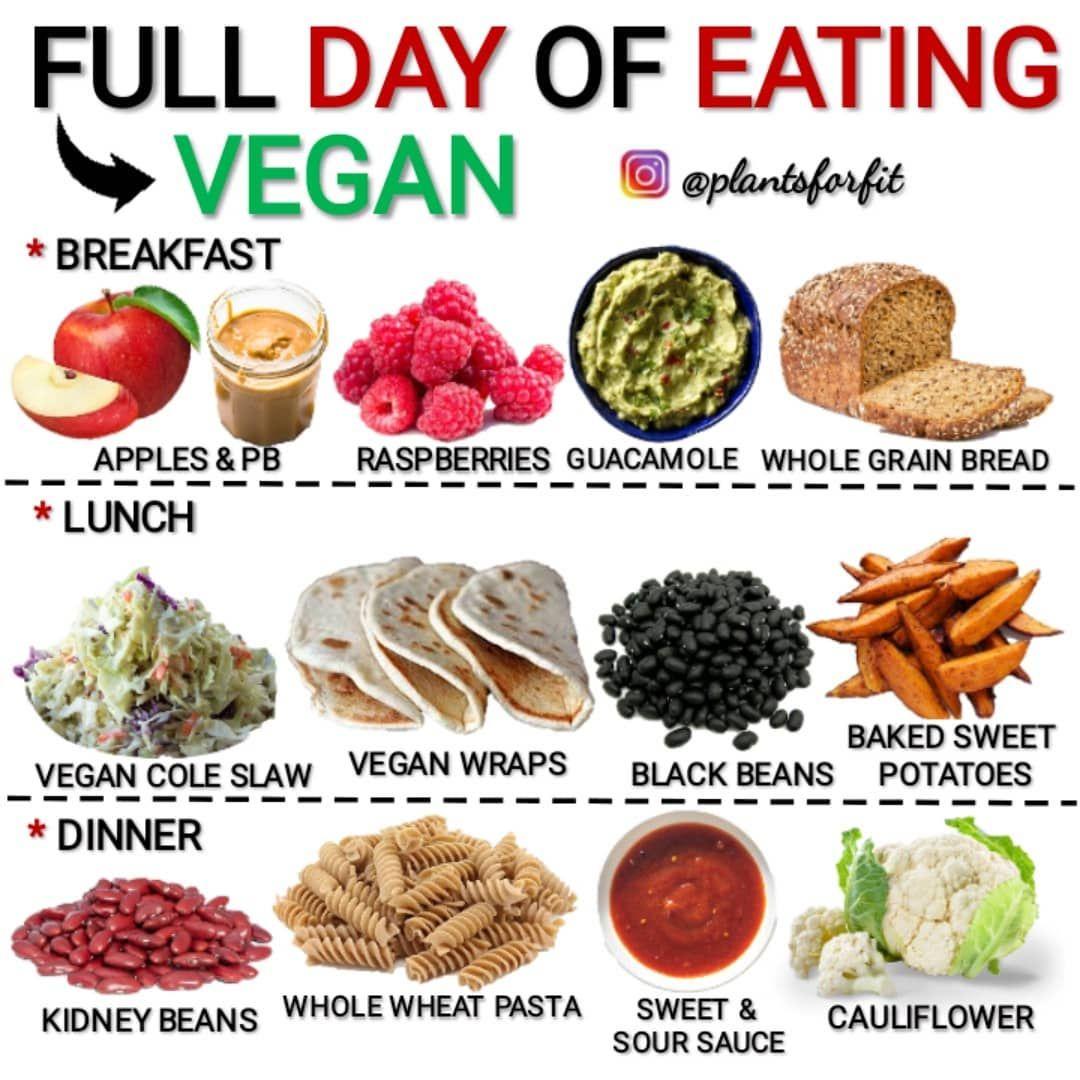 today on a vegan diet
