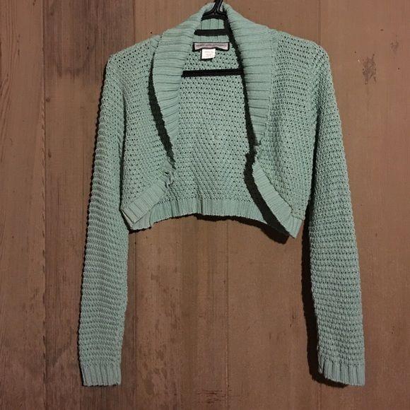 Sea foam green cropped long sleeve sweater top | Cropped