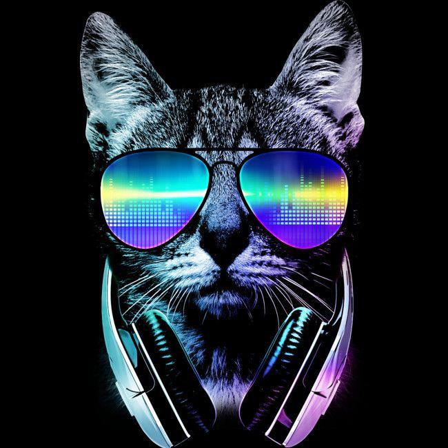 Pin On Cat Pop Art Cat wearing glasses wallpaper hd