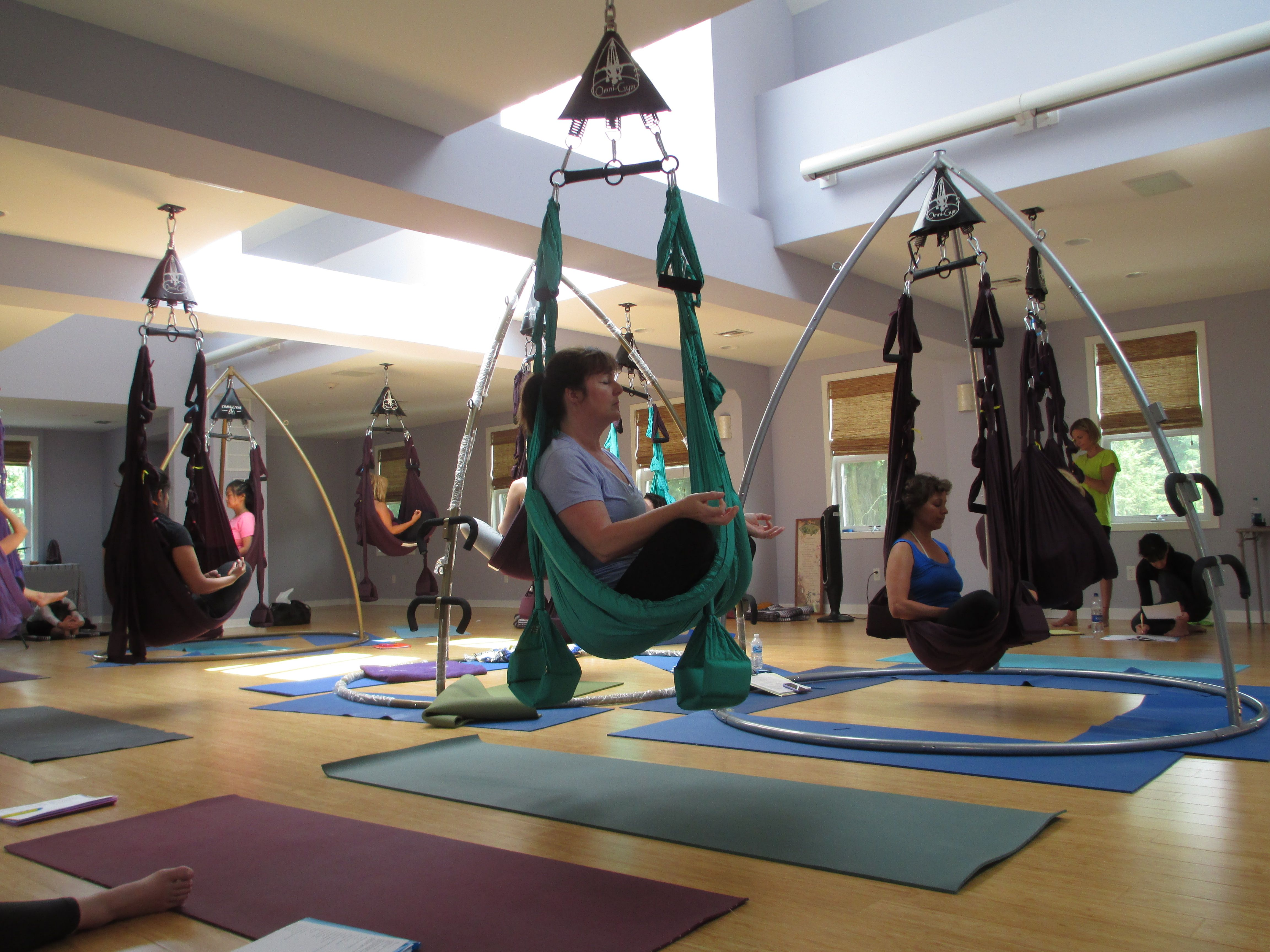 Omni Gym Yoga Swing Teacher Training At The Princeton Center For Yoga And Health Yoga Swing Aerial Yoga Teacher Training