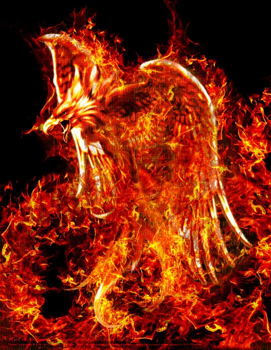 This Reminds Me Of The Book Because Of The Fire Legend Ave Fenix