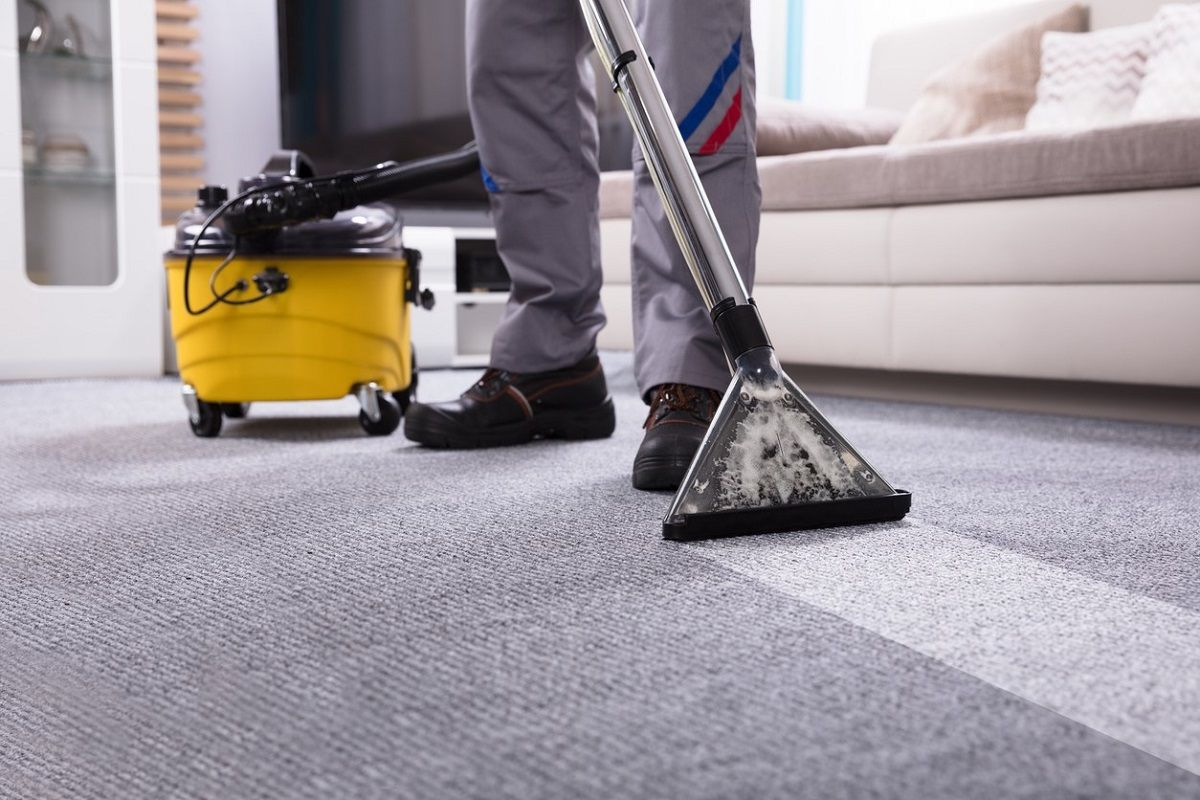 How To Choose The Reliable And Professional Carpet Cleaning Company In Brighton How To Clean Carpet Carpet Cleaning Company Carpet Cleaners