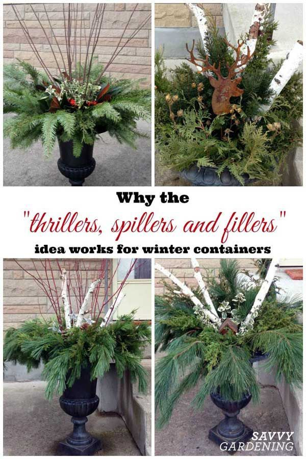 "Decorative Urns For Plants Why The ""thrillers Spillers And Fillers"" Idea Works For Winter"