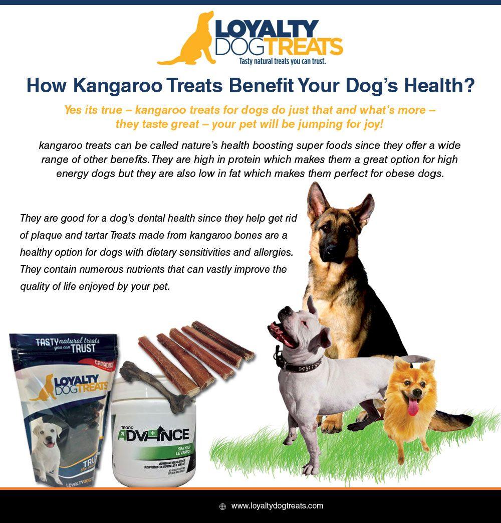 Loyalty dog treats offering small medium large size