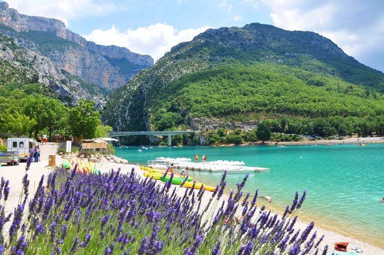 Lavendel bij het meer