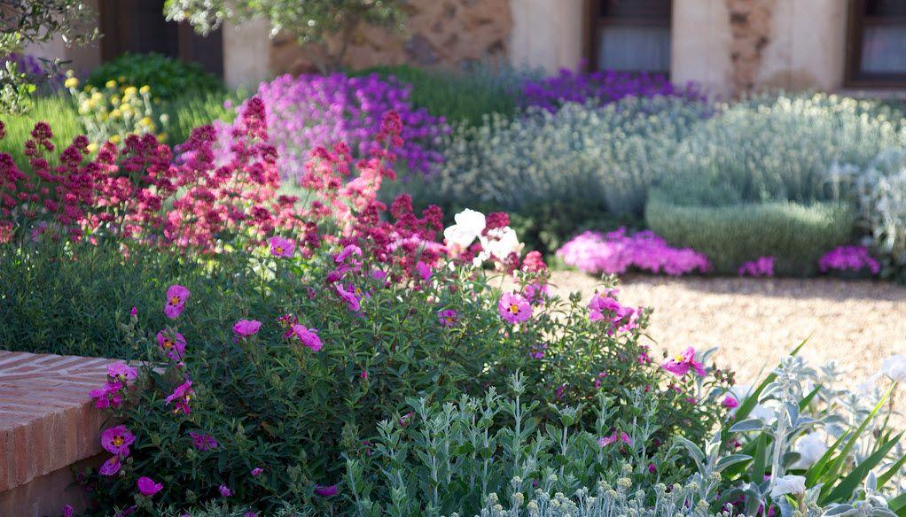 Un jard n mediterr neo despiertaymira garden jard n mediterr neo jard n seco y jard n Diseno jardin mediterraneo
